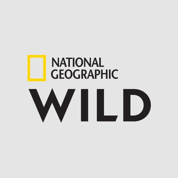 Nat Geo Wild on StarSat