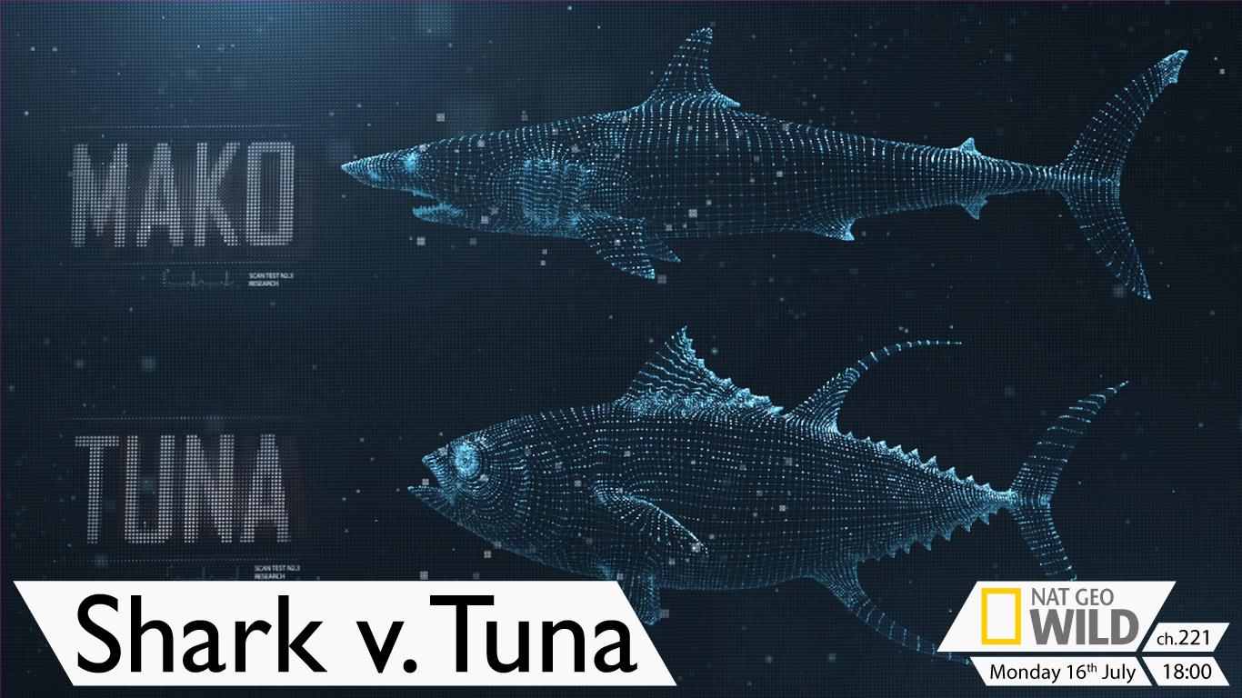 Shark v. Tuna