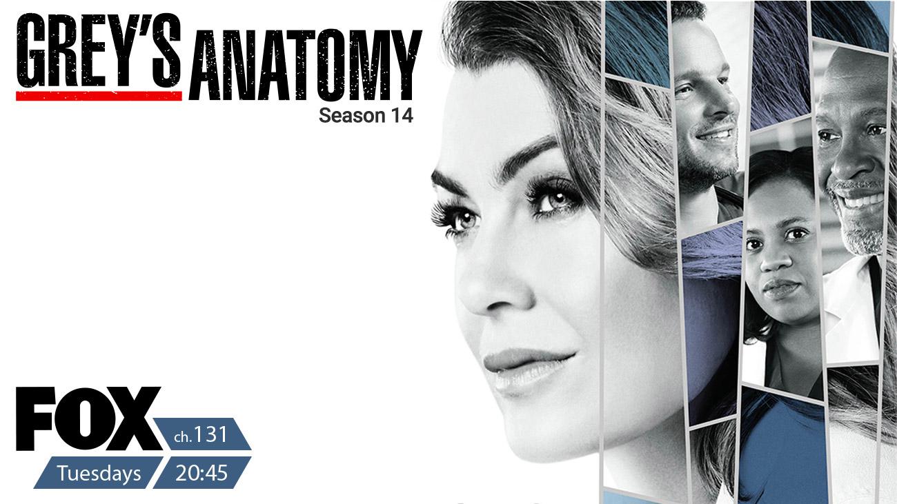 Grey's Anatomy on Fox on StarSat