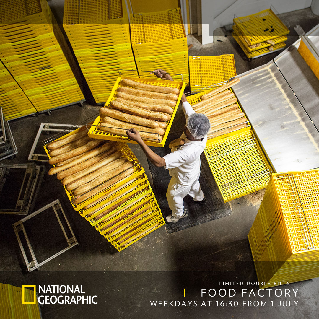 Food Factory on National Geographic on StarSat - option 1 - web